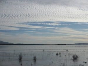 Rye Patch Reservoir, Pershing County, Nevada