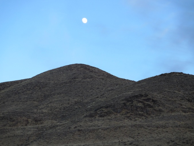 Nevada Desert Moonrise