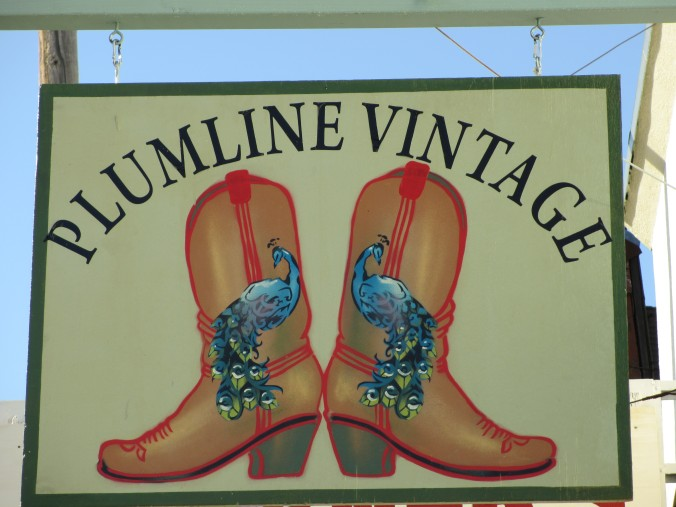 Downtown Shop, Plumline Vintage, Boulder Creek, California