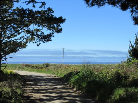 Lane with View of Pacific Ocean, Pescadero, CA