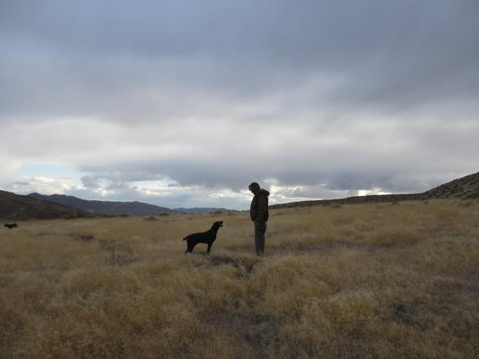 Man and Dog in Nevada Desert