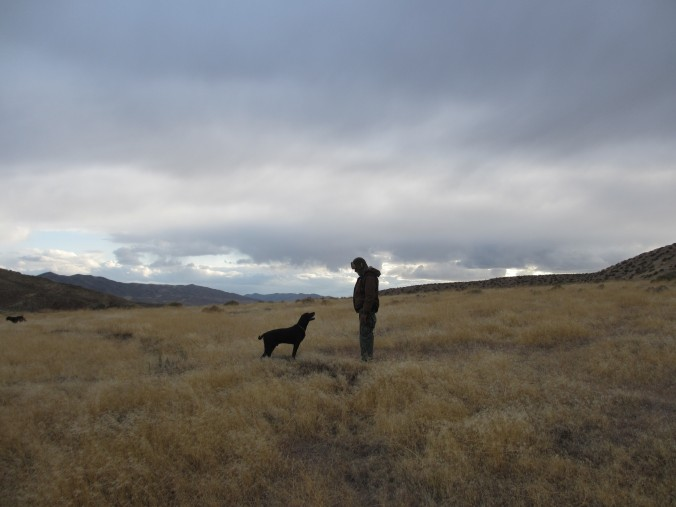 German Short-Haired Pointer and his owner in the Nevada Desert