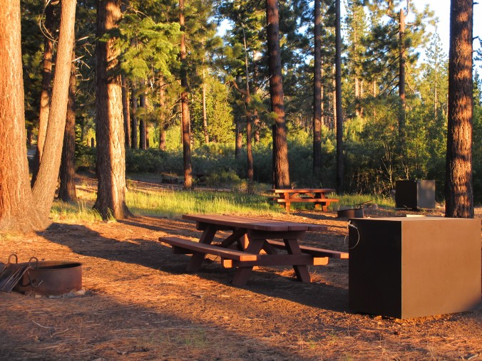 Bear Valley Campground, Tahoe National Forest, Northern California