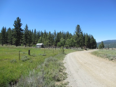 Dirt road leading to High Sierra Ranch