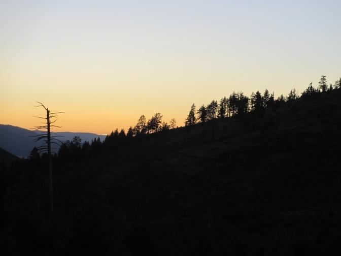 Bear Valley, Sierra Nevada Mountain Range