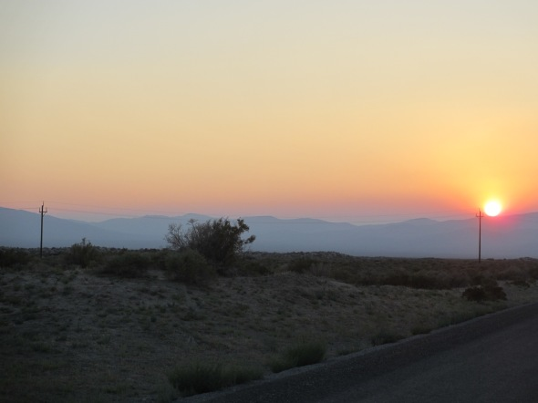 Desert Sunset in Nevada