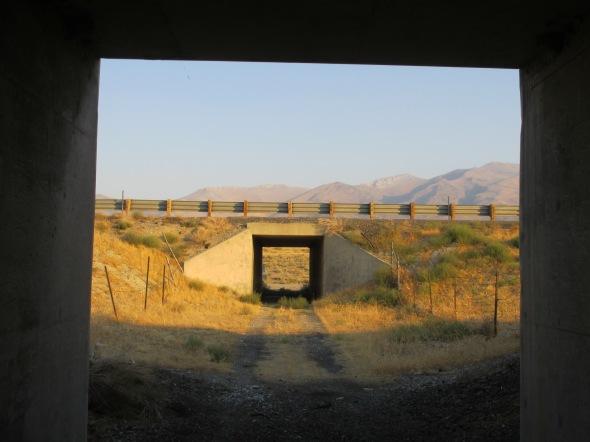 Nevada Desert Eugene Mountains and Antelope Plains