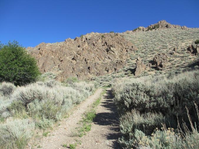 Humboldt Range, Unionville, Nevada
