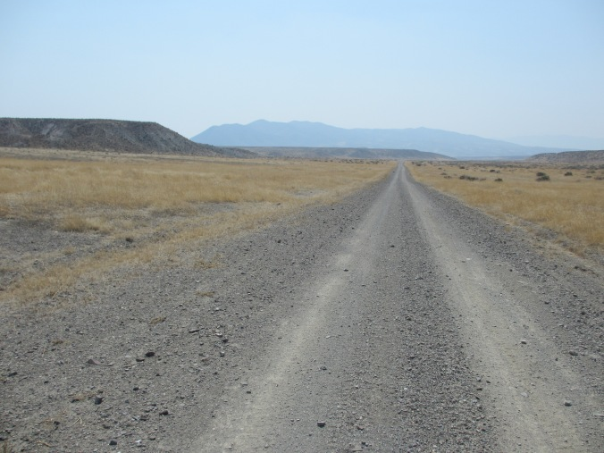 Nevada Desert Road