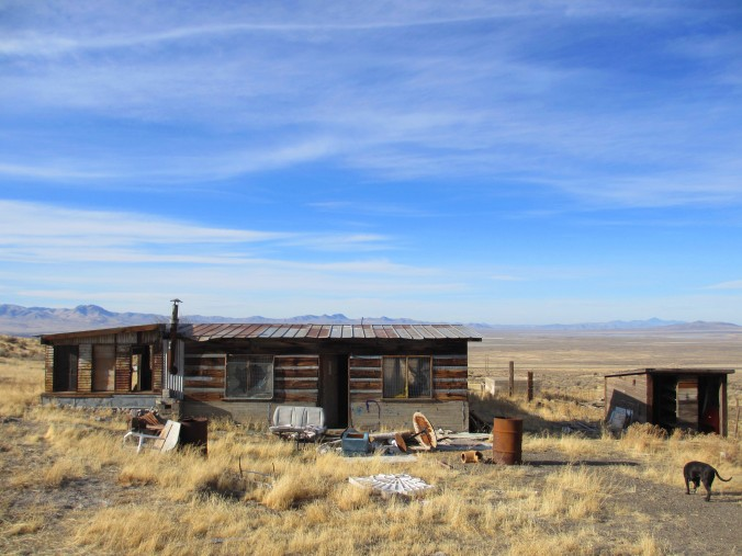 Abandoned Desert Homestead