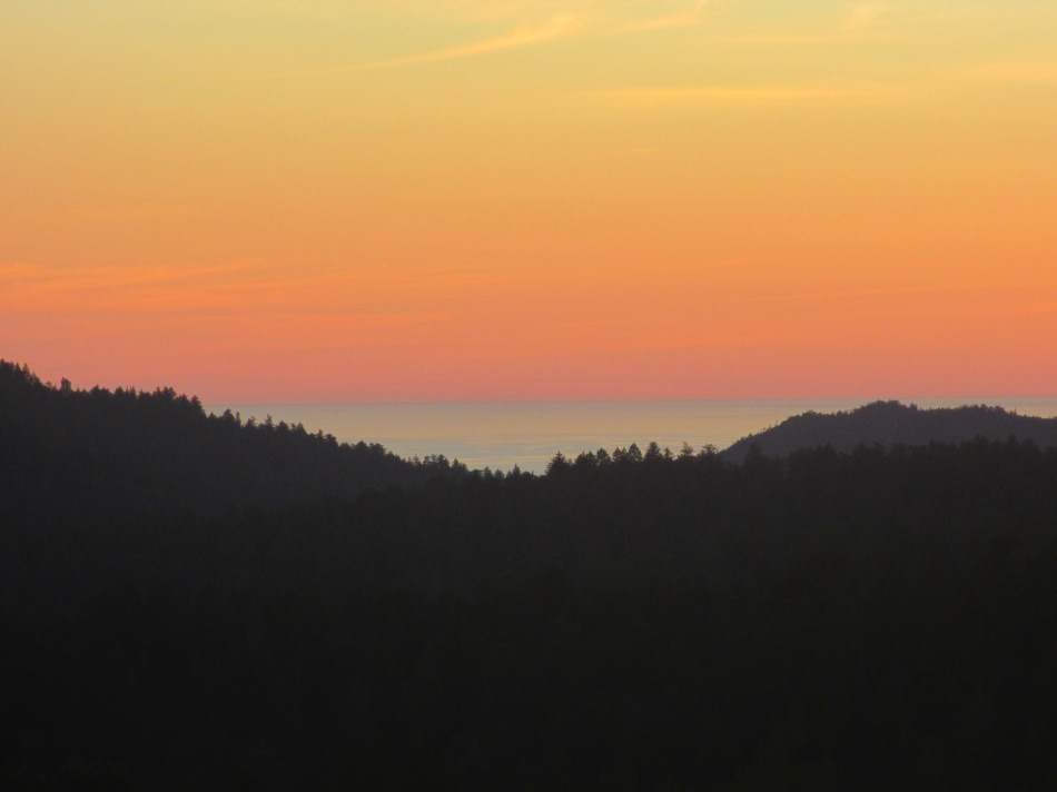 Sunset, Big Basin State Park, Pacific Ocean